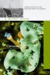 Carousel (St-Cyr and Kohler) - J. Robert Janes