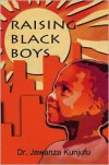 Raising Black Boys - Jawanza Kunjufu