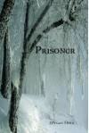 Prisoner (Kria, #1) - Megan Derr
