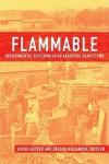 Flammable: Environmental Suffering in an Argentine Shantytown - Javier Auyero, Debora Alejandra Swistun