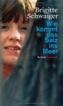 Wie Kommt Das Salz Ins Meer Roman - Brigitte Schwaiger