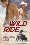 A Wild Ride - Andrew  Grey