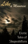 Like a Moonrise: Erotic Tales of Shapeshifters - MeiLin Miranda;Catt Kingsgrave;Marie Carlson;Kyell Gold;Rakelle Valencia;Aoife Bright