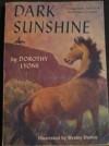Dark Sunshine - Dorothy Lyons