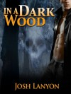 In a Dark Wood - Josh Lanyon