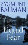 Liquid Fear - Zygmunt Bauman