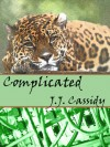 Complicated (Love Has No Boundaries) - J.J. Cassidy