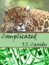 Complicated (Love Has No Boundaries) - J.J. Cassidy