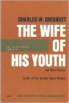 The Wife of His Youth and Other Stories - Charles W. Chesnutt