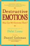 Destructive Emotions: A Scientific Dialogue with the Dalai Lama - Daniel Goleman, Dalai Lama XIV