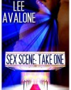 Sex Scene: Take One - Lee Avalone
