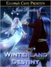 Winterland Destiny - Jaci Burton