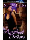 Amethyst Dreams (Amethyst, #2) - N.J. Walters