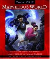 The Marvelous Effect: Marvelous World, Book 1 - Troy CLE