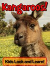 Kangaroos! Learn About Kangaroos and Enjoy Colorful Pictures - Look and Learn! (50+ Photos of Kangaroos) - Becky Wolff