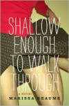 Shallow Enough to Walk Through - Marissa Reaume