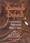 Ildanach Ildirech (Celtic Studies Publications) - John Carey;John T. Koch;Pierre-Yves Lambert