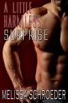 A Little Harmless Surprise (Harmless #3.5) - Melissa Schroeder