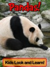 Pandas! Learn About Pandas and Enjoy Colorful Pictures - Look and Learn! (50+ Photos of Pandas) - Wolff,  Becky