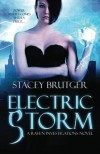 Electric Storm: A Raven Investigations Novel (Volume 1) - Stacey Brutger