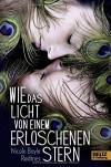 Wie das Licht von einem erloschenen Stern: Roman - Nicole Boyle Rodtnes, Gabriele Haefs