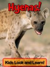 Hyenas! Learn About Hyenas and Enjoy Colorful Pictures - Look and Learn! (50+ Photos of Hyenas) - Becky Wolff
