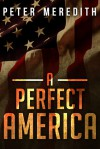 A Perfect America - Peter Meredith