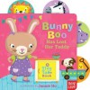 Bunny Boo Has Lost Her Teddy: A Tiny Tab Book - Nosy Crow