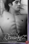 Reluctant Romance: Guys and Guys - M.A. Church, Victoria Blisse, Sara York, Lily Sawyer
