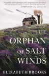 The Orphan of Salt Winds - Elizabeth L. Brooks