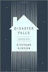 Disaster Falls: A Family Story - Stephane Gerson