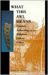 What This Awl Means: Feminist Archaeology at a Wahpeton Dakota Village - Janet D. Spector