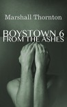 Boystown 6: From the Ashes (Boystown Mysteries) - Marshall Thornton
