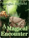 A Magical Encounter - Meagan Hatfield