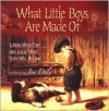 What Little Boys Are Made Of: Loving Who They Are and Who They Will Become - Jim Daly