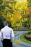 A Sharp Bend in the Road - Gerard Bianco