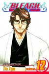 Bleach, Vol. 12: Flower on a Precipice - Tite Kubo