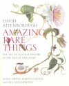 amazing rare things / anglais - Susan Owens,  Martin Clayton & Rea Alexandratos: David Attenborough