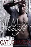 SEALed at Midnight (Hot SEALs Book 3) - Cat Johnson