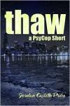Thaw - Jordan Castillo Price