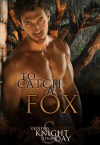 To Catch A Fox (The Fox Mysteries) - Geoffrey Knight, Ethan Day