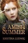 Amish Summer - Kristina Ludwig