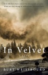 In Velvet: A Novel - Burt Weissbourd
