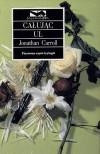 Całując ul - Jonathan Carroll