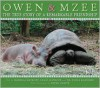Owen and Mzee: The True Story of a Remarkable Friendship - Craig Hatkoff, Paula Kahumbu, Peter Greste