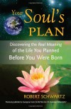 Your Soul's Plan: Discovering the Real Meaning of the Life You Planned Before You Were Born - Robert Schwartz