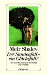 Der Sündenfall – ein Glücksfall? Alte Geschichten aus der Bibel neu erzählt - Ruth Melcer, Meir Shalev