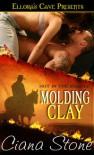 Molding Clay - Ciana Stone