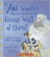 You Wouldn't Want to Work on the Great Wall of China!: Defenses You'd Rather Not Build - Jacqueline Morley, David Salariya