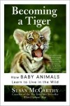 Becoming a Tiger: How Baby Animals Learn to Live in the Wild - Susan Mccarthy